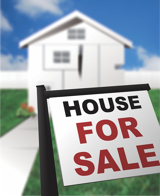 Real estate company for sale in Yehud