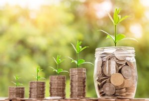 השקעה במניות צמיחה